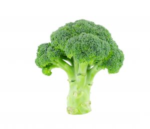 Green broccoli isolate on white with clipping path