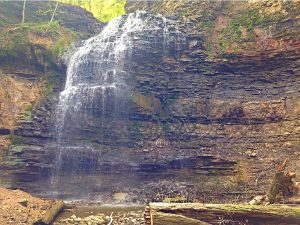 Tiffany Falls - July 11